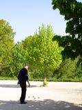 игра игры шариков французская Стоковые Фото