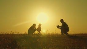 Игра матери и папы с их дочерью в солнце счастливый младенец идет от папы к маме молодая семья в поле с a акции видеоматериалы