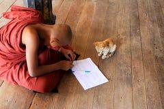 Игра монаха с котом в монастыре Shwe Yan Pyay, Nyaungshwe, Мьянме Стоковое фото RF