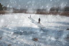 Игра семьи в парке день зим Стоковое Изображение RF