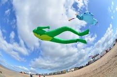 Игра с ветром Стоковая Фотография RF