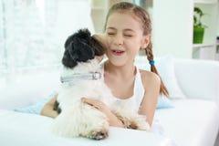 Игра с собакой Стоковые Изображения