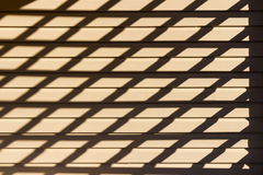 Игра теней Стоковое фото RF