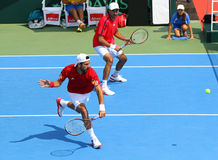 Игра Украина v Австрия тенниса Davis Cup Стоковые Изображения RF