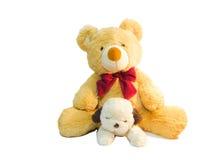 Игра щенят плюшевого медвежонка и куклы друг с другом Стоковое Изображение RF