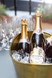 Игристое вино в ведре льда стоковая фотография rf