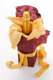игристое вино подарка коробки Стоковая Фотография RF