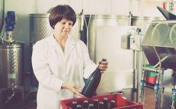 Игристое вино работника женщины разливая по бутылкам с машиной Стоковое фото RF