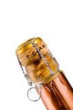 игристое вино Стоковое фото RF