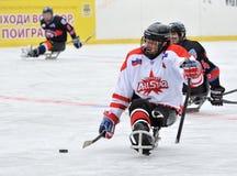 3 игрока играя хоккей розвальней Стоковая Фотография RF