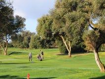 Игроки в гольф играя гольф стоковое фото rf