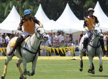 Игроки и лошади поло стоковые фото