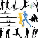Игроки спорта от различного вектора силуэта спорт Иллюстрация штока