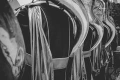 Игроки тубы от латунного или соответствуя диапазона играя durin живой музыки Стоковое фото RF