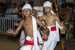 Игроки Tamerine выполняют во время Esala Perahera в Канди в Шри-Ланке Стоковое Изображение RF