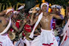 Игроки Tamerine выполняют к удару барабанщиков Getabera вдоль улиц Канди в Шри-Ланке во время Esala Perahara Стоковые Фото