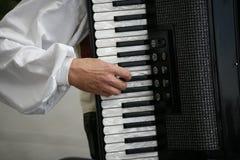 игрок аккордеони Стоковые Изображения