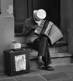 Игрок аккордеона стоковое изображение