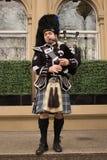 Игрок волынки одетый в килте играя на фронте Hilton Hotel в Глазго, Шотландии стоковая фотография rf