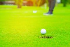 Игрок в гольф кладя шар для игры в гольф на зеленый гольф, пирофакел на времени вечера солнца установленном, шар для игры в гольф стоковое фото rf