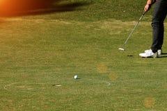 Игрок в гольф кладя шар для игры в гольф на зеленый гольф Стоковая Фотография