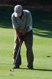 игрок в гольф стоковые изображения rf