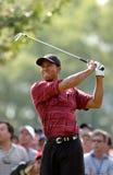 Игрок в гольф Tiger Woods профессиональный Стоковая Фотография