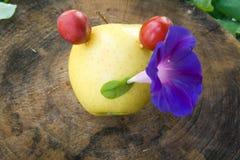 игрок джаза яблока Стоковая Фотография