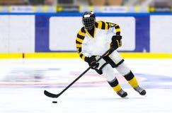 игрок иллюстрации льда хоккея конструкции вы стоковые фотографии rf
