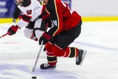 игрок иллюстрации льда хоккея конструкции вы Стоковая Фотография RF