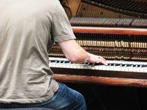 игрок рояля Стоковое Изображение