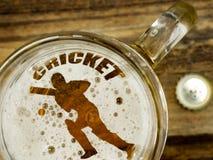 Игрок сверчка в пиве стоковые изображения rf