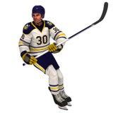Игрок хоккея на льде Стоковые Изображения