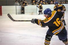 Игрок хоккея Стоковое Фото
