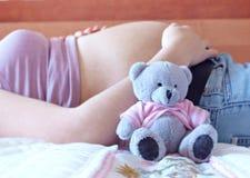 игрушечный живота медведя стоковое фото rf