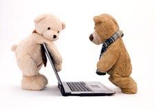 игрушечный компьтер-книжки компьютера медведя Стоковые Фото