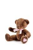 игрушечный медведя коричневый Стоковое Изображение