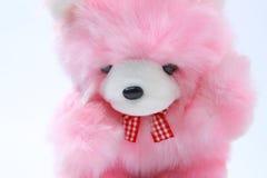 игрушечный медведя розовый Стоковое Изображение