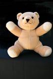 игрушечный медведя Стоковые Фото