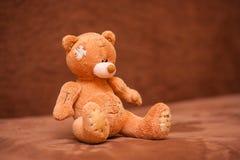 игрушечный медведя коричневый Стоковые Изображения