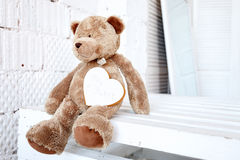 игрушечный медведя милый Стоковая Фотография