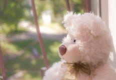 игрушечный медведя сиротливый Стоковое фото RF