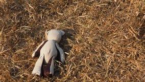 Игрушечный на поле Стоковые Изображения