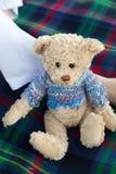 игрушечный пикника медведя Стоковые Фото