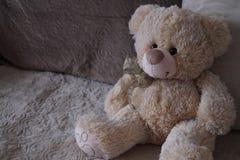 игрушечный помадки медведя Стоковое Фото