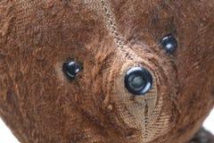 игрушечный портрета медведя старый Стоковые Изображения