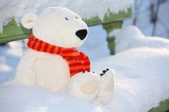 игрушечный стенда медведя Стоковое Изображение