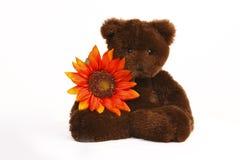 игрушечный удерживания цветка медведя стоковая фотография rf