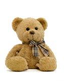 игрушечный 2 медведей новый Стоковое фото RF