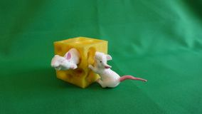 Игрушка для детей на зеленой предпосылке 2 mouses с сыром стоковые изображения rf